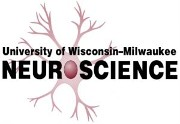 Postdoctoral Fellowship in Neuroscience Job Opening in